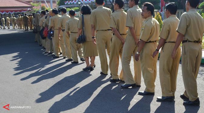 jumlah-pegawai-pajak-dan-konsultan-pajak-indonesia-kurang-memadai
